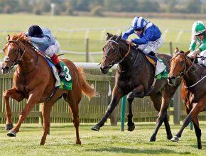 FOUNDATION  — фаворит трайла Craven Stakes