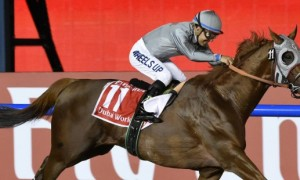 Итоги Dubai World Cup