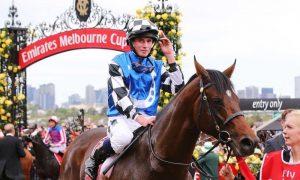 Protectionist снова идет в Мельбурн Кап