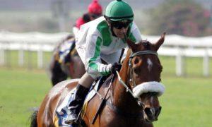 ЮАР — успехи Малкинского конного завода