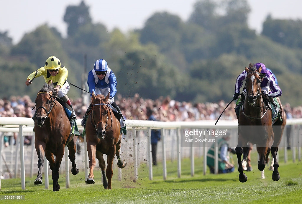 Postoponed and Highland Reel, Juddmont Int. (Getty Images)