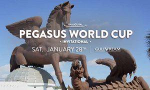 Скачки на Кубок Пегаса