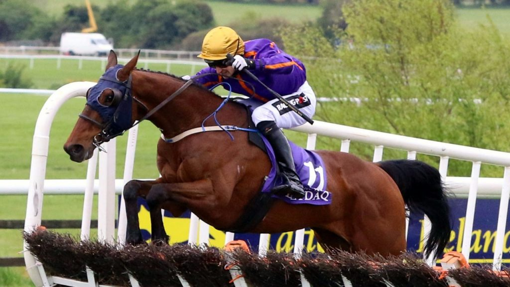 Wicklow Brave, photo by Racing Post