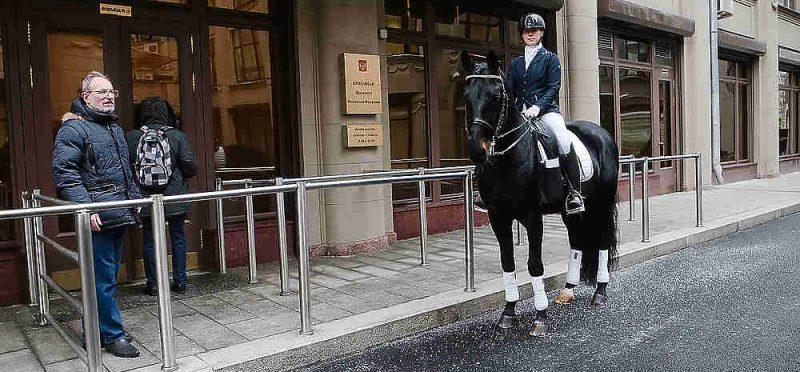 «Лошадь пришла в приемную Путина, чтобы защитить ипподром» -Московский комсомолец