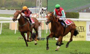 Формула успеха российских конников