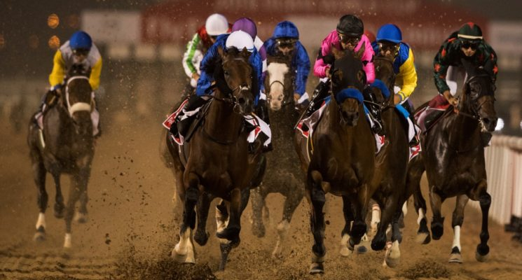 Итоги Dubai World Cup 2018