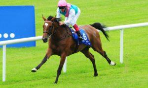 Ген резвости скаковых лошадей и его влияние на развитие породы